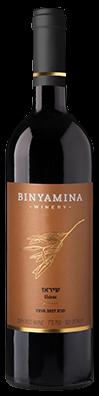 Binyamina Wein Teva Shiraz